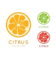 Kinds of citrus stylish icon Juicy fruit logo vector