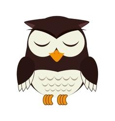 Owl bird animal design vector