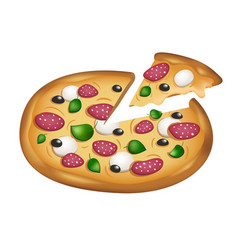 sliced italian pizza with vector image