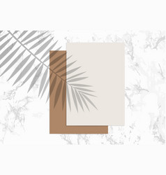 Two paper sheets mock up with shadow palm leaf vector