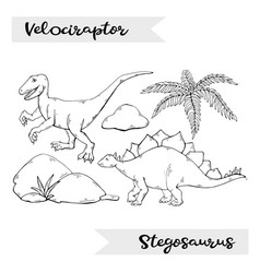 velociraptor and stegosaurus isolated on a vector image