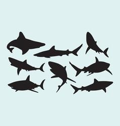 Shark wild animal silhouettes vector image
