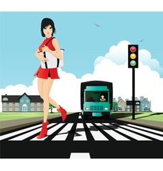 Crosswalk and traffic signals vector image