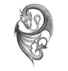 Dragon tattoo in engraving style vector