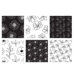 floral seamless patterns set beautiful flowers vector image