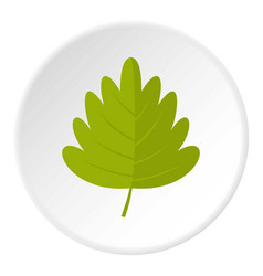 Green hawthorn leaf icon circle vector