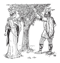loki shows idun a crabapple tree vintage vector image