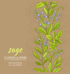 Sage backround vector