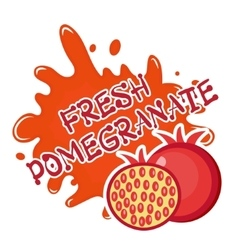 Fresh pomegranate splash icon logo sticker vector image