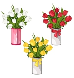 White yellow and red tulips in vases isolated vector image