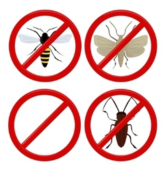 no insects cockroach moth and wasp vector image