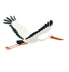 a stork flying in sky graphic isolated vector image