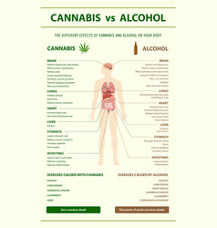 Cannabis vs alcohol vertical infographic vector
