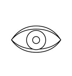 Eye human anaomy to optical graphic vector