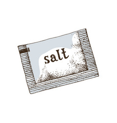 hand drawn salt sachet vector image