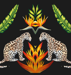 mirror tigress tropical flowers and leaves black vector image