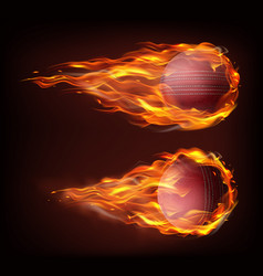 Realistic flying cricket ball in fire vector