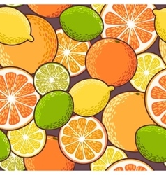 Seamless citrus vector