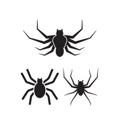 spider icon design set bundle template isolated vector image