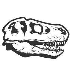 T-rex dinosaur skull isolated on white background vector