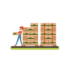 Warehouse worker carrying box distribution and vector