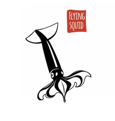 Flying Squid black and white vector image