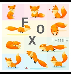 Set of Fox family vector image vector image