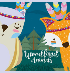 fox and owl woodland animals vector image