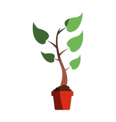 Plant in a pod icon vector