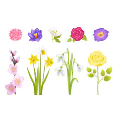 Spring flowers set poster vector