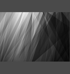 abstract white and black background design vector image