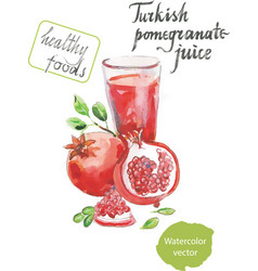 turkish pomegranate juice watercolor vector image vector image