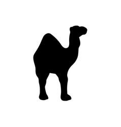 camel black icon vector image