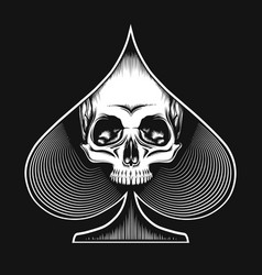 Skull in spade symbol vector