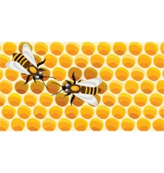 Working bees on honey cells vector