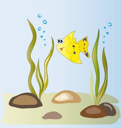 Yellow fish in the algae vector