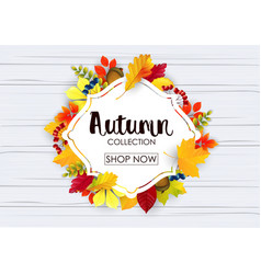Autumn collection sale banner vector