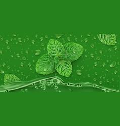 green drops mint 3d realistic vector image