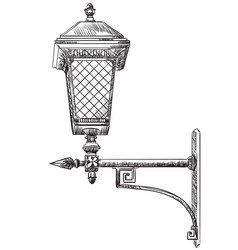Lantern15 vector