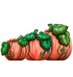 pumpkins wall sticker vector image