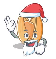 Santa pistachio nut mascot cartoon vector