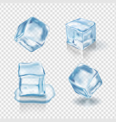 Transparent ice cubes realistic vector