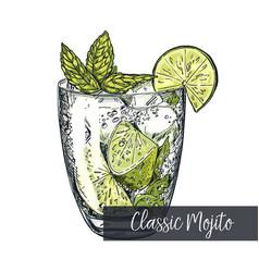 classic mojito colorful sketch vector image
