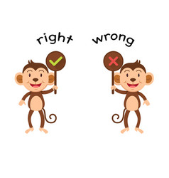opposite words right and wrong vector image vector image