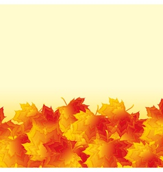 Autumn background with orange maple leaf fall vector image