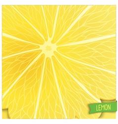 Just lemon background vector