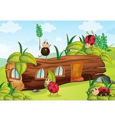 Ladybugs and a wood house vector