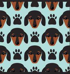 Little dachshund puppy head seamless pattern dog vector