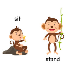 Opposite words sit and stand vector