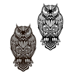 Owl bird tattoo vector image